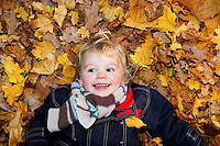 Boy (3-4) lying on ground in autumn leaves