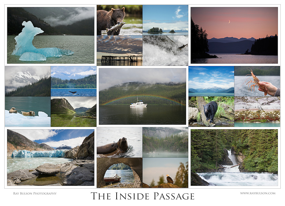 "This 21-photo collage contains representative images from four years of photographing the Inside Passage of Southeast Alaska. (32.6""x23.6"")"