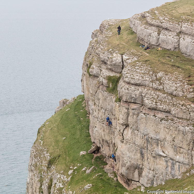 Climbers bolting limestone on Great Orme's Head, Conwy.