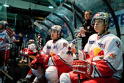 EC Red Bull Salzburg bench during ice-hockey match between EC Red Bull Salzburg and HDD Tilia Olimpija in 20th Round of EBEL league, on November 19, 2010 at Eisarena, Salzburg, Austria. (Photo By Matic Klansek Velej / Sportida.com)