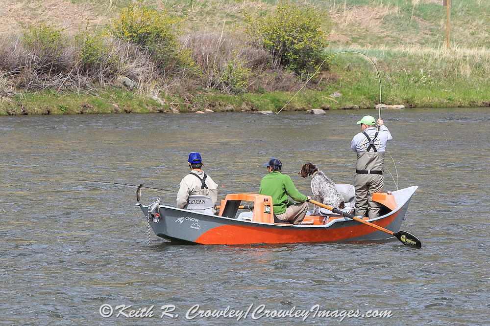 Drift boat fishing on the Madison River near Bozeman, Montana