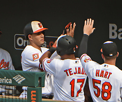July 23, 2017 - Baltimore, MD, USA - Baltimore Orioles' Manny Machado, left, celebrates with Ruben Tejada (17) in the dugout after driving him in as the game-winning run with a sacrifice fly against the Houston Astros in the eighth inning on Sunday, July 23, 2017 at Oriole Park at Camden Yards in Baltimore, Md. The Orioles defeated the Astros, 9-7. (Credit Image: © Kenneth K. Lam/TNS via ZUMA Wire)