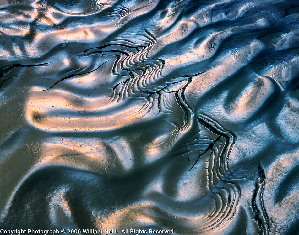 Pattern in the mud, Paria Canyon/Vermillion Cliffs Wilderness Area, Utah 1985