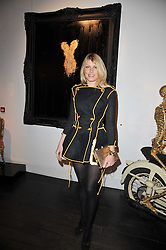 MEREDITH OSTROM at a collective exhibition of work entitles Bling Bling held at Opera Gallery, 134 New Bond Street, London on 15th December 2010.  Proceeds from the evening were raised for The Prince's Foundation for Children & the Arts.