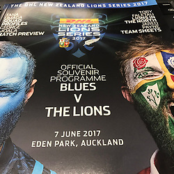 Game 2 BLUES THE LIONS