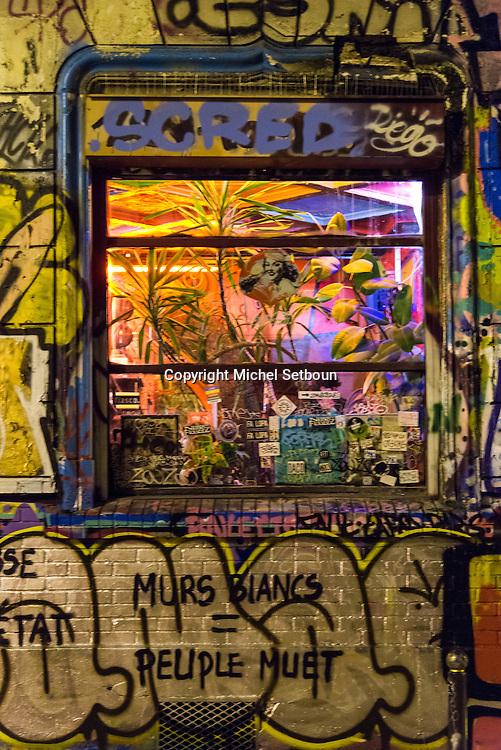 France. Paris 20th; Belleville .area . Rue Denoyez  , mural art street