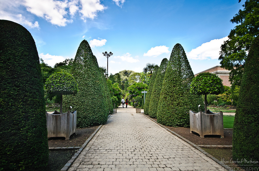 The Kruidtuin (or herbal gardens) of Leuven are the oldest in Belgium, created in 1738 for medical students of Leuven University.