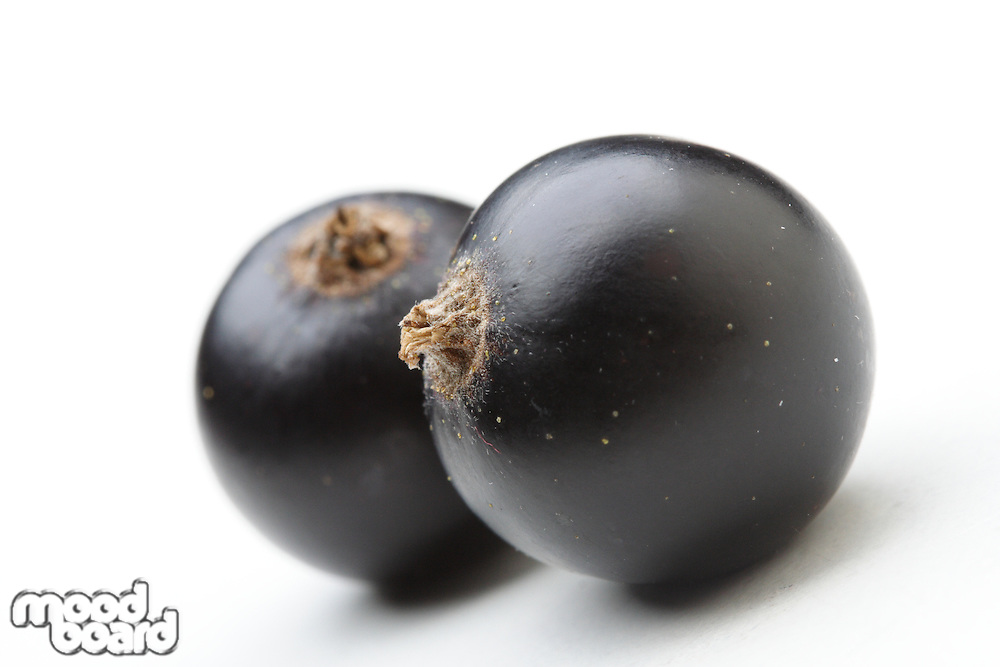 Close - up of blackcurrants on white background