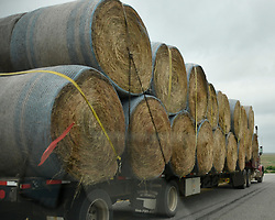 Semi trucks with dry hay rolls being brought in from near by states to help out farmers feed their live stock after a series of storms damaging farms across the central plains  in Buffalo Oklahoma, Severe thunder and tornado storms are forecast for the rest of the week in tornado alley areas. . Photo by Gene Blevins/ZumaPress (Credit Image: © Gene Blevins/ZUMA Wire)