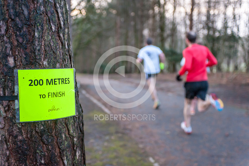 January, 2015 Glasgow. Action from Pollock Park parkrun, 3 January 2015 at Pollock Park in Glasgow, Great Britain. Photo: Paul J Roberts / RobertsSports Photo. All Rights Reserved