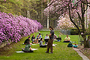 Springtime in the garden, SUNY Albany