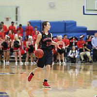 Women's Basketball: Concordia University (Wisconsin) Falcons vs.  Concordia Ann Arbor