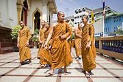 02 MARCH 2008 -- BANGKOK, THAILAND:  Buddhist monks at a special ceremony at Wat Traimit (Temple of the Golden Buddha) in Bangkok, Thailand. Photo by Jack Kurtz/ZUMA Press