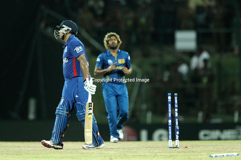 Lasith Malinga celebrates the wicket of Samit Patel of England  during the ICC World Twenty20 Super Eights match between England and Sri Lanka held at the  Pallekele Stadium in Kandy, Sri Lanka on the 1st October 2012<br /> <br /> Photo by Ron Gaunt/SPORTZPICS