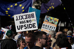 © Licensed to London News Pictures . 21/09/2019. Brighton, UK. Brexit has no upside placard . Thousands attending a march organised by the People's Vote for a second EU referendum on Brexit pass through Brighton and along the Promenade during the first day of the 2019 Labour Party Conference from the Brighton Centre . Photo credit: Joel Goodman/LNP