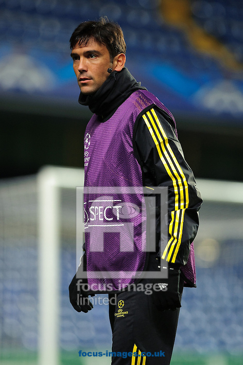 Picture by Gerald O'Rourke/Focus Images Ltd +44 7500 165179.06/11/2012.Paulo Ferreira of Chelsea, pictured during an open training session at Stamford Bridge, London.
