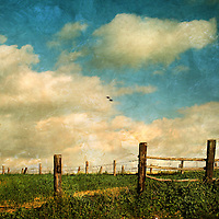 A countryside view with an old wooden fence
