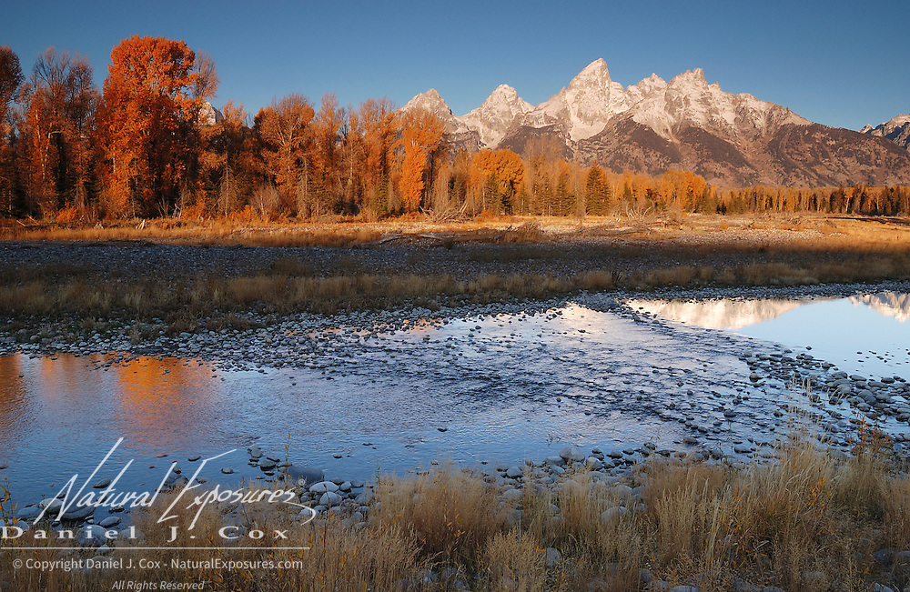 Schwabacher Landing on the Snake River and the Grand Teton mountain range in morning alpenglow during the fall. Wyoming