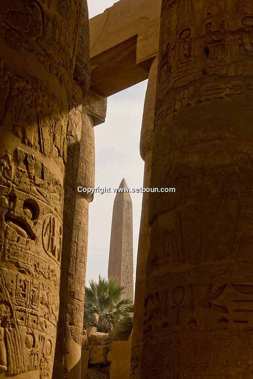 Egypt . Karnak -Karnak temple of Amon Ra. hypostyle hall. A chamber where the ceiling is supported by columns or pillars.    Louxor  Egypt    /  Karnak. temple de Amon re.  salle hypostyle. colonnes  Louqsor  Egypte   /  L0056002