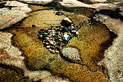 Tidal pool. Pebbles washed in  by the tide. A centurian? Or just a map of wherever.
