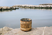 """PISCIOTTA, ITALY - 22 APRIL 2018: A chestnut wood barrel used for salting the Menaica anchovies in the traditional manner is seen here by the harbour in Pisciotta, Italy, on April 22nd 2018.<br /> <br /> Former restaurant owners Donatella Marino and her husband Vittorio Rimbaldo have spent the recent years preparing and selling salted anchovies, called alici di menaica, to a growing market thanks to a boost in visibility from the non-profit Slow Food.  The ancient Menaica technique is named after the nets they use brought by the Greeks wherever they settled in the Mediterranean. Their process epitomizes the concept of slow food, and involves a nightly excursion with the special, loose nets that are built to catch only the larger swimmers. The fresh, red anchovies are immediately cleaned and brined seaside, then placed in terracotta pots in between layers of salt, to rest for three months before they're aged to perfection.While modern law requires them to use PVC containers for preserving, the government recently granted them permission to use up to 10 chestnut wood barrels for salting in the traditional manner. The barrels are """"washed"""" in the sea for 2-3 days before they're packed with anchovies and sea salt and set aside to cure for 90 days. The alici are then sold in round terracotta containers, evoking the traditional vessels that families once used to preserve their personal supply.<br /> <br /> Unlike conventional nets with holes of about one centimeter, the menaica, with holes of about one and half centimeters, lets smaller anchovies easily swim through. The point may be to concentrate on bigger specimens, but the net also prevents overfishing."""
