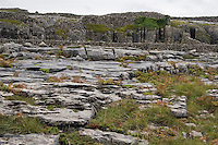 Field of limestone rock on Inis Oirr the Aran Islands Galway Ireland