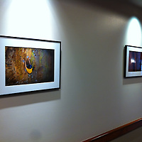 Climbing prints on display at the American Mountaineering Center in Golden