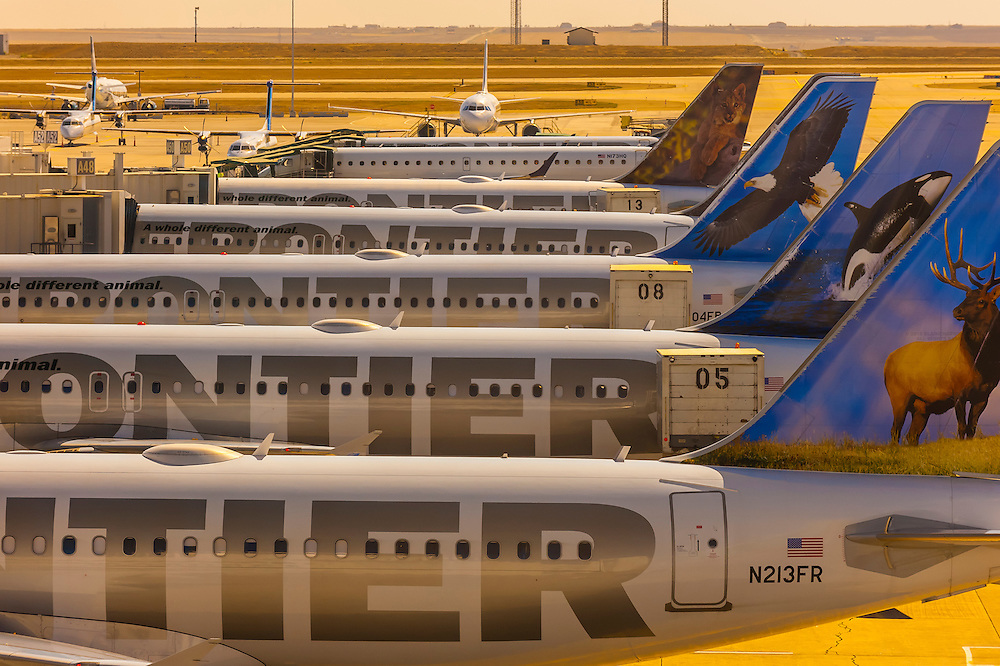 Frontier Airlines jets lined up at gates on Concourse A at Denver International Airport, Denver, Colorado USA.
