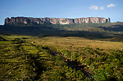 La Gran Sabana, Venezuela, 14-04-2011.Camino hacia la cima del Roraima tepuy en La Gran Sabana.  Localizada al sur de Venezuela en el macizo Guayanés en la parte sureste del Estado Bolívar hasta la frontera con Brasil. En ella conviven diversos grupos indígenas, entre ellos la etnia Pemón. La Gran Sabana forma parte de uno de los Parques Nacionales más extensos de Venezuela, el Parque Nacional Canaima. La Gran Sabana, 14 Abril  de 2011. .(Ramon Lepage / Orinoquiaphoto/ LatinContent/Getty Images)..Trail to Kukenam and Roraima tepui. Tepuis are large mesas that rise out of dense jungle in southeast Venezuela and adjacent Brazil and Guyana. Over 100 of these plateaus rise above the verdant landscape of this region, which is known in Venezuela as the Gran Sabana and also the Guyana Highlands. Tepuis are comprised of Precambrian sandstone, and are some of the oldest exposed rock formations in the world. Monte Roraima is one of the best known of the tepuis and has a labyrinth of rock forms and endemic plants on its summit..