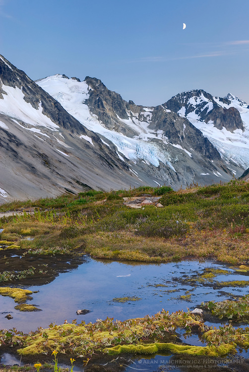 Snowmelt stream flowing through green moss in balpine basin, unnamed glaciated peaks of Boulder/Salal Divide are in the distance, Coast Range British Columbia Canada