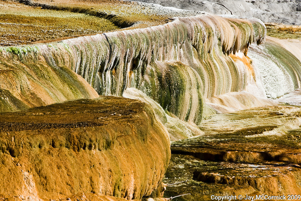 Picture of Mammoth Springs on the only time in recorded history that the springs ran dry.  Small earthquake the night before, changed the flow and the springs turned off.  Green is settled bacteria.  Color lasted about an hour before the sun bleach color to white like in the background.