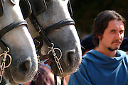 A settembre in piazza Alfieri si svolge il Palio di Asti con sfilate dei borghigiani, sbandieratori e corsa dei cavalli montati a pelo.