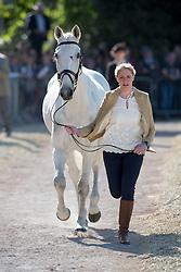 Wilmot Olivie, (GBR), Cool Dancer<br /> CCI4* - Mitsubishi Motors Badminton Horse Trials 2016<br /> © Hippo Foto - Jon Stroud<br /> 06/05/16