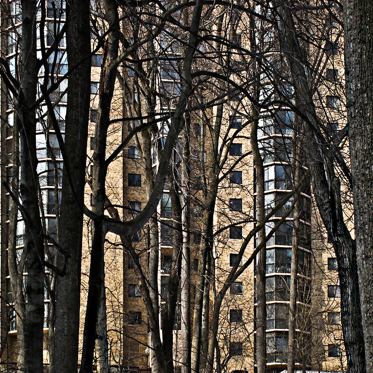 Montebello Condominium, Alexandria, Vierginia, winter facade of one of the buildings seen through a network of bare winter tree trunks.