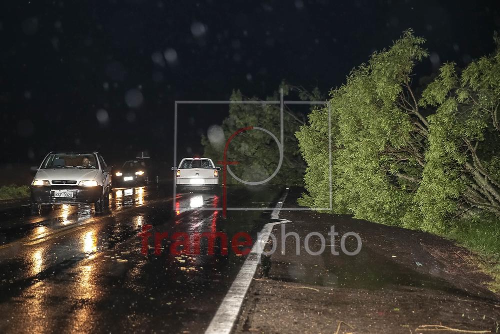 Porto Alegre, RS - 21/12/2014 -Temporal com ventos de 130km/h derrubou várias árvores entre os km 315 a 330 da BR-116, no Rio Grande do Sul. Bombeiros e a policia federal foram chamados para atender ocorrências ao longo da BR. Foto: Fabio Gomes/Raw Image/Frame