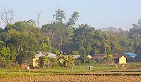 Thakudwara, a Tharu village in the Terai region, and gateway to Bardia National Park, Nepal