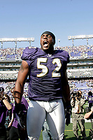 Baltimore Ravens Ray Lewis plays in game against the Dallas Cowboys.<br /> (Tom DiPace)