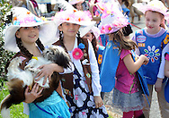 DOYLESTOWN, PA - MAY 3:  Girl Scouts from troop 22103 and 254 in Doylestown pose for photos with a dog named Autumn during the second annual Strut Your Mutt with Roxy at Fanny Chapman Park May 3, 2014 in Doylestown, Pennsylvania. Roxy Reading Therapy Dogs, a nonprofit group that uses dogs to promote literacy and to comfort children in crisis hosted the event, and encouraged dogs and their owners to wear hats in honor of Kentucky Derby Day. (Photo by William Thomas Cain/Cain Images)