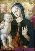 The Virgin and Child with two Saints about 1500. Oil on panel, Sienna, Italy.  Bernardino Fungai 1460-1516 approx.  The Virgin's dress and Christ's cushion are made of the most expensive silk.  The goldfinch on the parapet alludes to Christ's death.  The bird was mistakenly believed to eat thorns.  According to legend,  it plucked a spine from Christ's crown of thorns and got a red spot on its head from a drop of his flood.