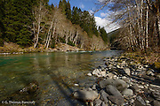 The Elwha River at Mary Falls.