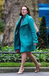 © Licensed to London News Pictures. 05/12/2017. London, UK. Lord Privy Seal and Leader of the House of Lords Baroness Natalie Evans arriving in Downing Street to attend a Cabinet meeting this morning.Yesterday, Brexit negotiations on the Northern Ireland border were stalled when Arlene Foster of the DUP said she could not support commitment to keep Northern Ireland aligned with EU laws. Photo credit : Tom Nicholson/LNP