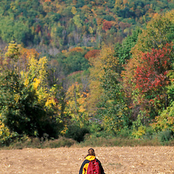 A woman and her young daughter explore the scenic corn fields on the Henderson property.  Litchfield Hills.  New Milford, CT