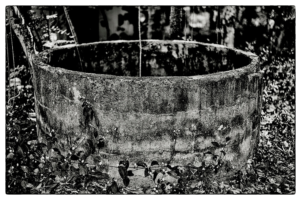 "An abandoned concrete water reservoir, in the grounds of the Pha Koeng Buddhist temple, Chaiyaphum Province, Northeast Thailand, 2014. From the series: Pha Koeng"" (2011-2017)."