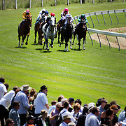 Spectators watch the horse racing during a day at the Races at Ascot Park, Invercargill, Southland, New Zealand. 10th December 2011. Photo Tim Clayton