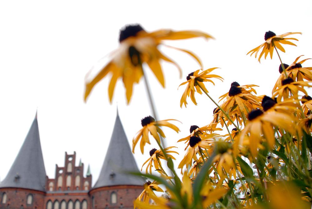 Deutschland Luebeck Holstentor Blumen gelb unscharf