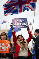 © Licensed to London News Pictures. 15/01/2019. London, UK. Pro-Brexit and anti-Brexit demonstrators wave flags and placards next to each outside the Houses of Parliament in Westminster. Today, MPs are due to vote on British Prime Minister Theresa May's EU withdrawal deal, after the previous vote in December was postponed. Photo credit : Tom Nicholson/LNP