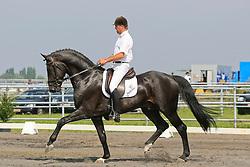 Van Laer Nick (BEL) - Dayano<br /> BWP-LRV Moorsele 2009<br /> © Hippo Foto - Leanjo de Koster