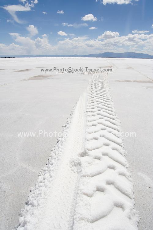Argentina, Salinas Grandes, Salt flats