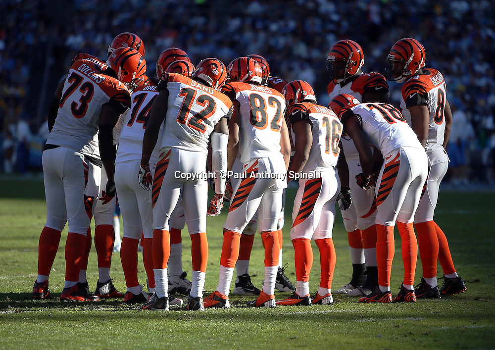 The Cincinnati Bengals offense huddles and calls a play during the NFL week 13 football game against the San Diego Chargers on Sunday, Dec. 1, 2013 in San Diego. The Bengals won the game 17-10. ©Paul Anthony Spinelli