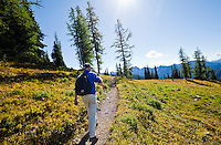 A mature man hiking alone along the Pacific Crest Trail in the Fall season just North of Harts Pass in the Cascade Range of Washington, USA.        Model Released: 20100913_MR_A